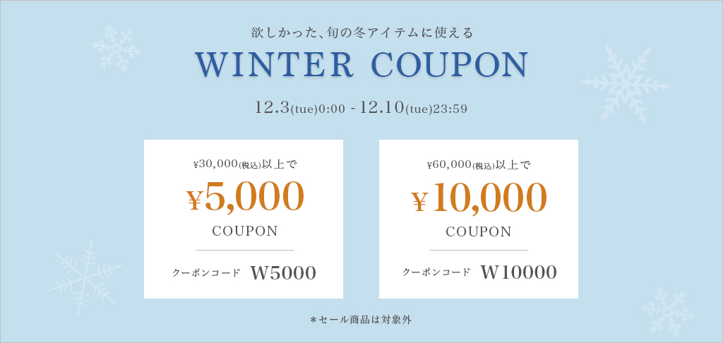 WINTER COUPON